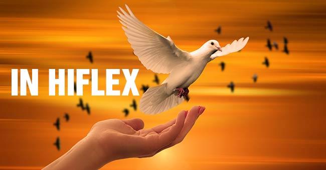 Vì sao hiflex vẫn là quân bài chủ chốt trong nghành in