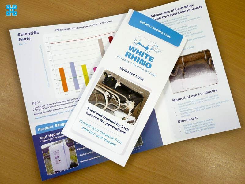 Nội dung ngắn gọn, bắt mắt giúp khách hàng có thiện cảm đầu tiên về tờ rơi