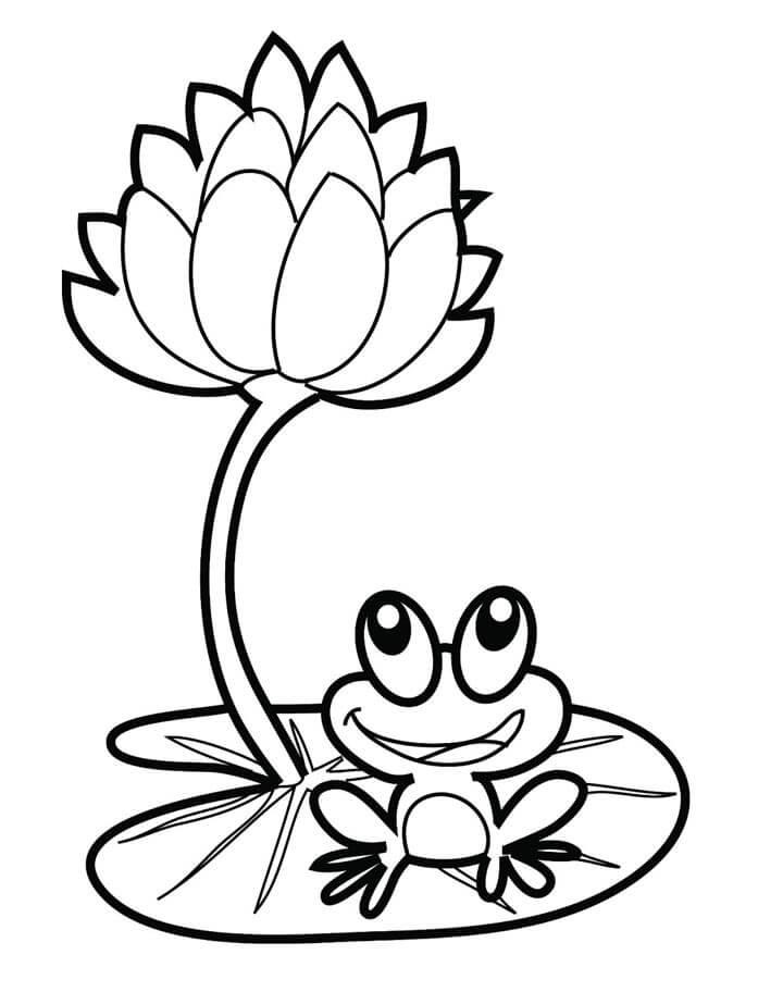 In tranh tô màu hoa sen và chú ếch con