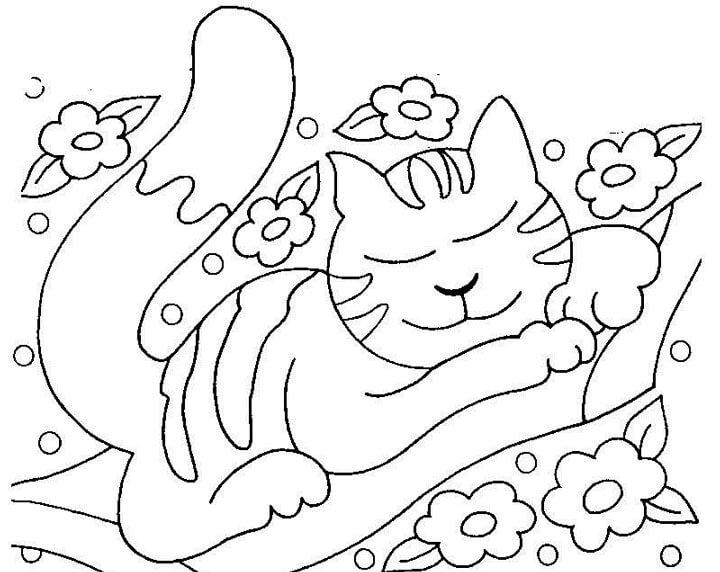 Tập tô màu tranh con mèo lười nhé