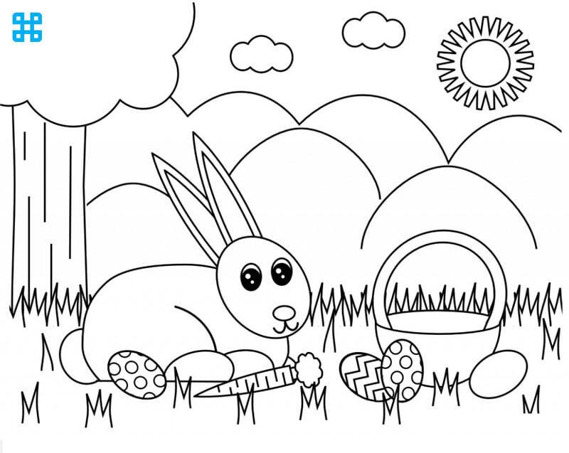 Tô màu cho con vật, con thỏ và củ cà rốt