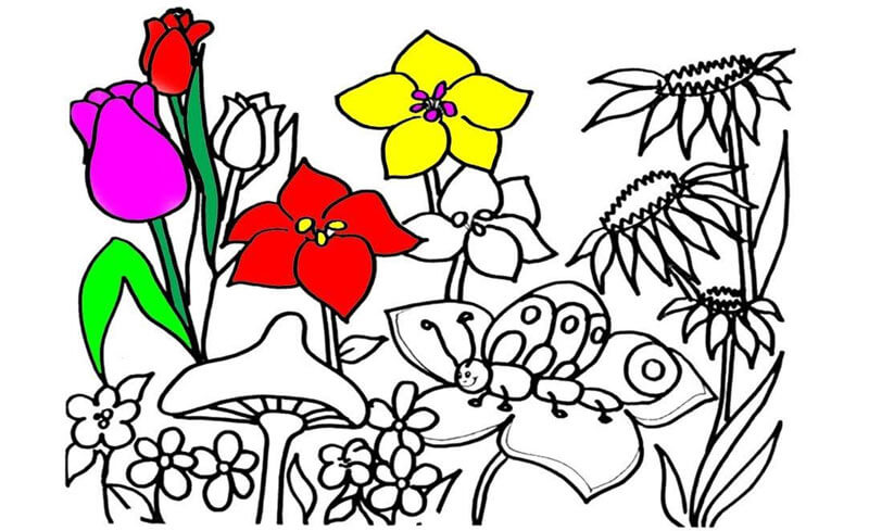 Tranh tô bông hoa nhiều màu sắc