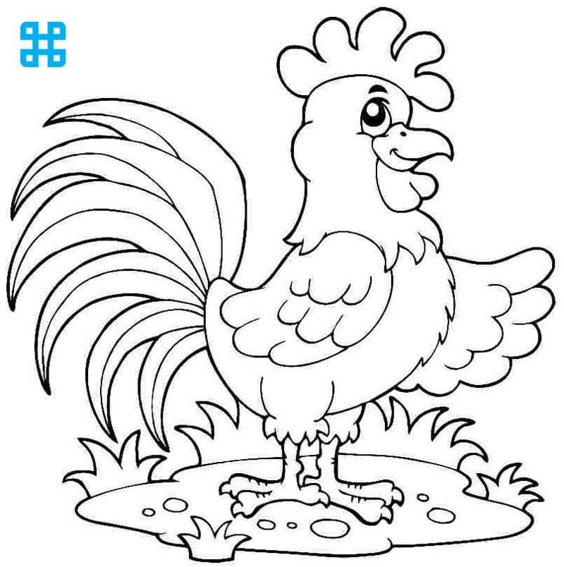 Tranh tô màu con gà trống