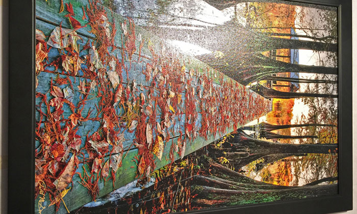 Tranh vải canvas treo tường