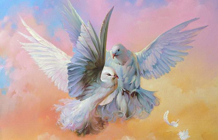 Chim bồ câu trắng trên bầu trời xanh rất thích hợp cho cả người mệnh Kim và Thủy