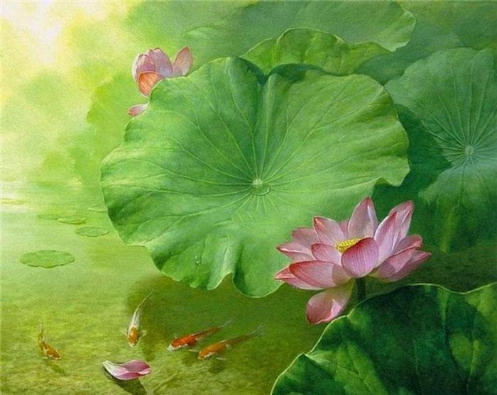 Tranh hoa sen cùng mặt nước, cá vừa đại diện cho Kim vừa đại diện cho Thủy