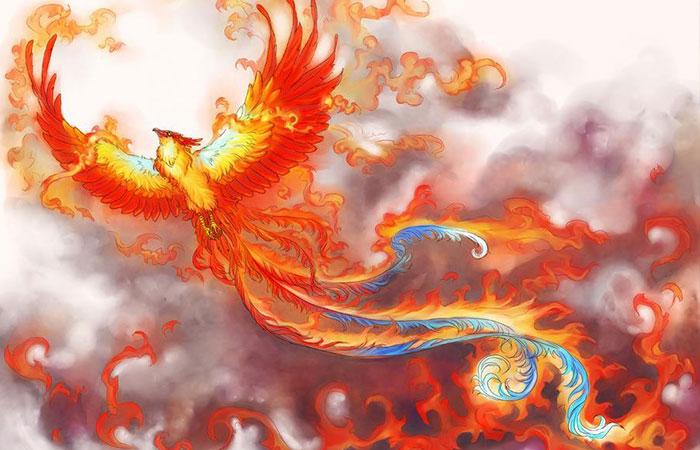 Tranh phượng hoàng lửa thích hợp với mệnh Hỏa - tương sinh mệnh Mộc