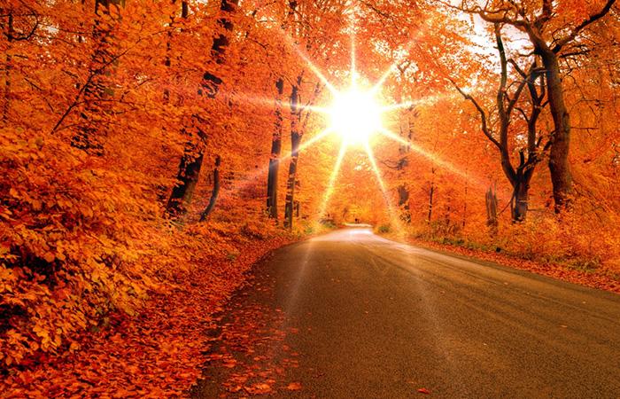 Tranh về mùa thu phù hợp với mệnh Thổ, tương sinh mệnh Kim