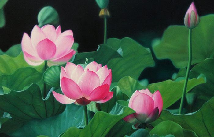 ý nghĩa tranh hoa sen phong thủy