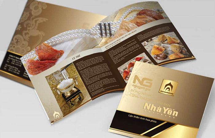 thiết kế catalogue giá rẻ, chuyên nghiệp
