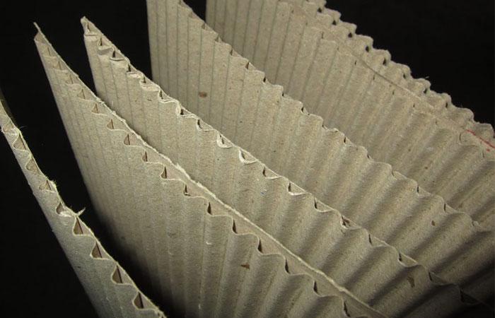 Bột gỗ là thành phần chính làm nên giấy Carton hiện nay